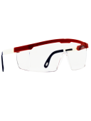 RWB Hornets Safety Glasses